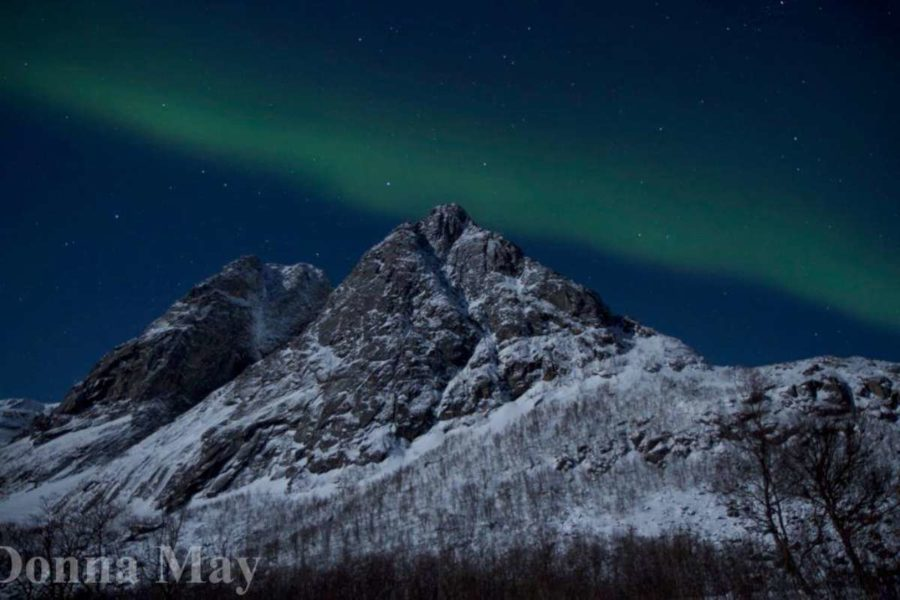 the-northern-lights-_-donna-may